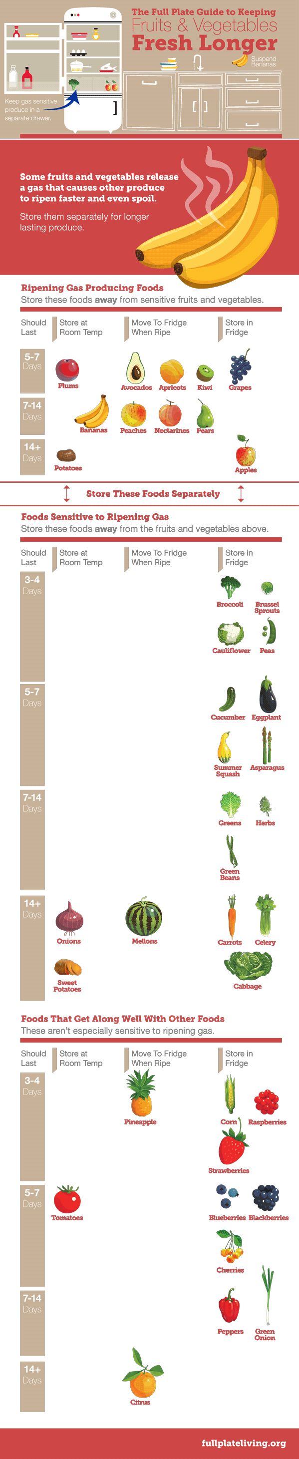 storing-food-infographic.png