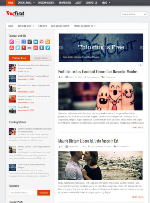 Homepage demo of WordPress theme TruePixel