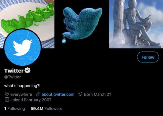 twitter profile bio