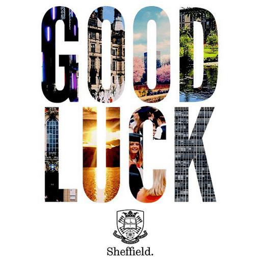 University of Sheffield instagram posts