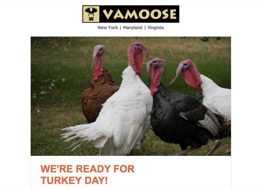 vamoose.png