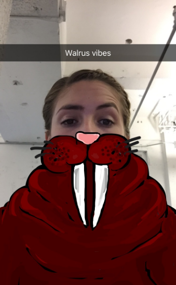 Mom Walrusvibessnapchatpng Funnyfoto Funny Pictures 49 Of The Best Snapchat Drawings Weve Ever Seen