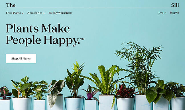 example of the website design trend serif fonts