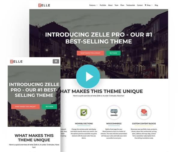 zelle pro minimalist wordpress themeisle theme