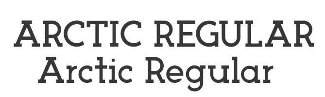 Arctic free serif font