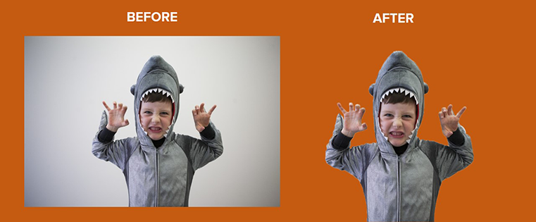 How to Remove the Background of a Photo in Photoshop or PowerPoint (Example)