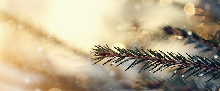 4 Ways Salespeople Can Make December Their Best Month