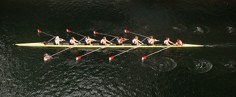 The Psychology of Teams: 9 Lessons for Running a Highly Efficient, Highly Happy Team