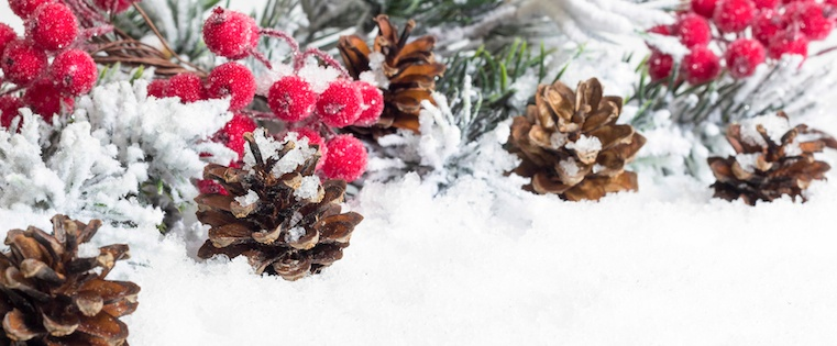 6 Content Ideas to Keep Ecommerce Shoppers in the Holiday Spirit