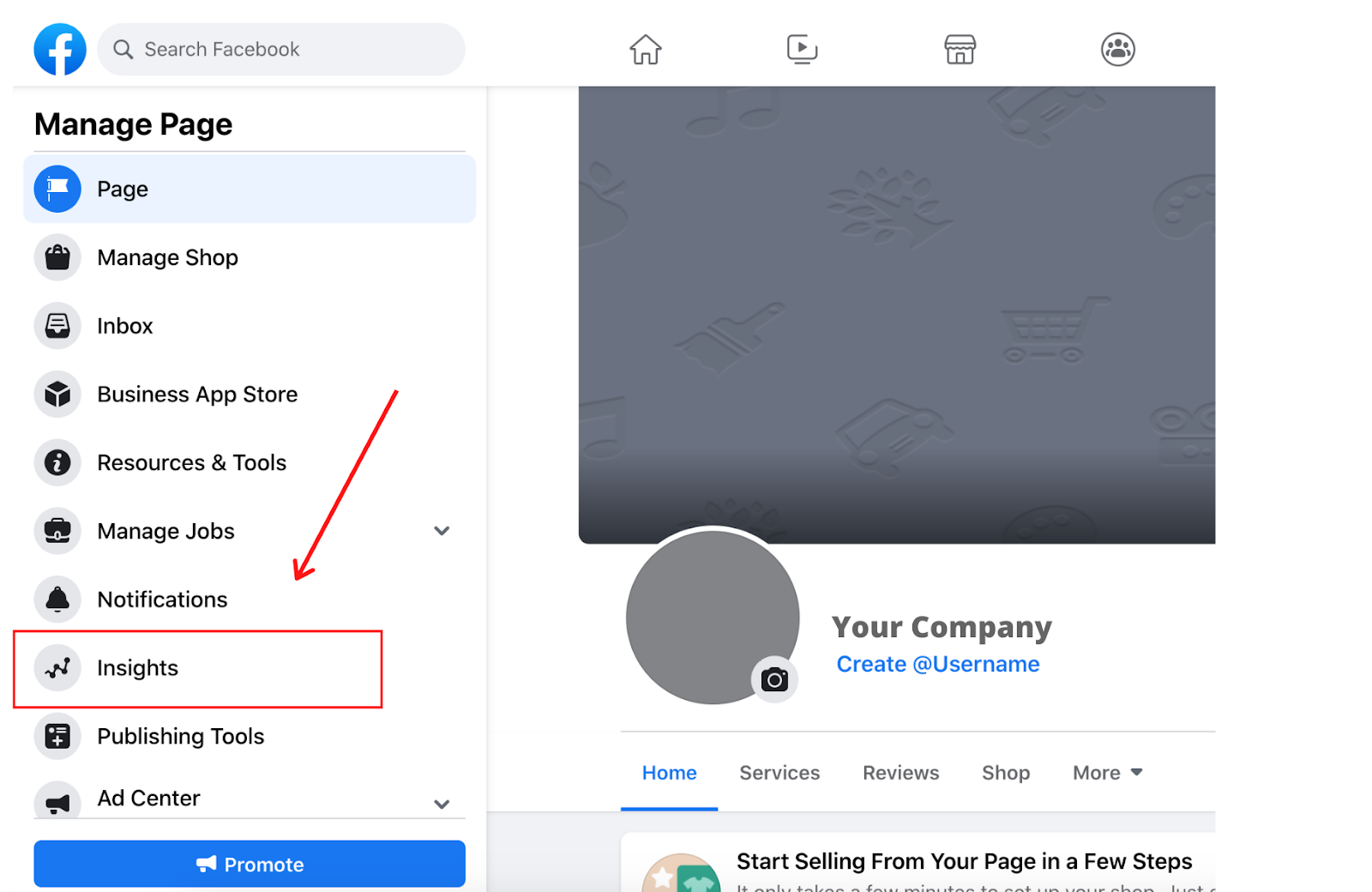 Facebook Business Page Insights Tool