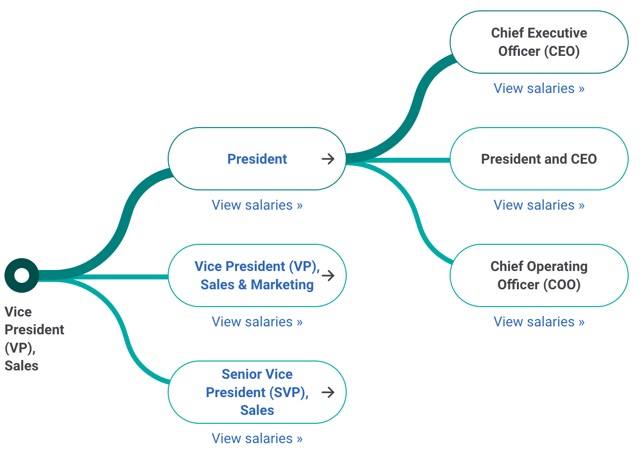 Vice President of Sales Career Path