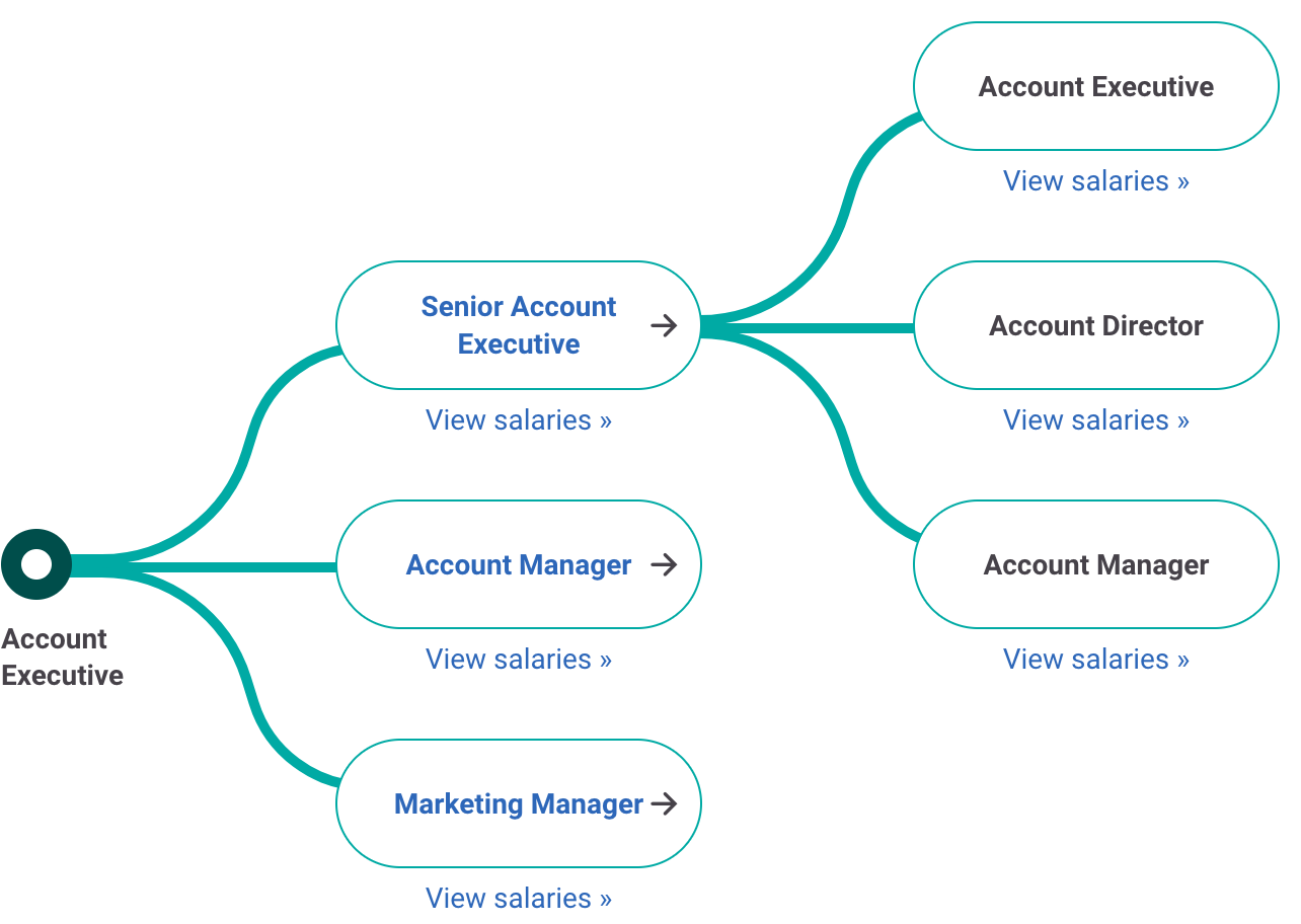 Account Executive Career Path