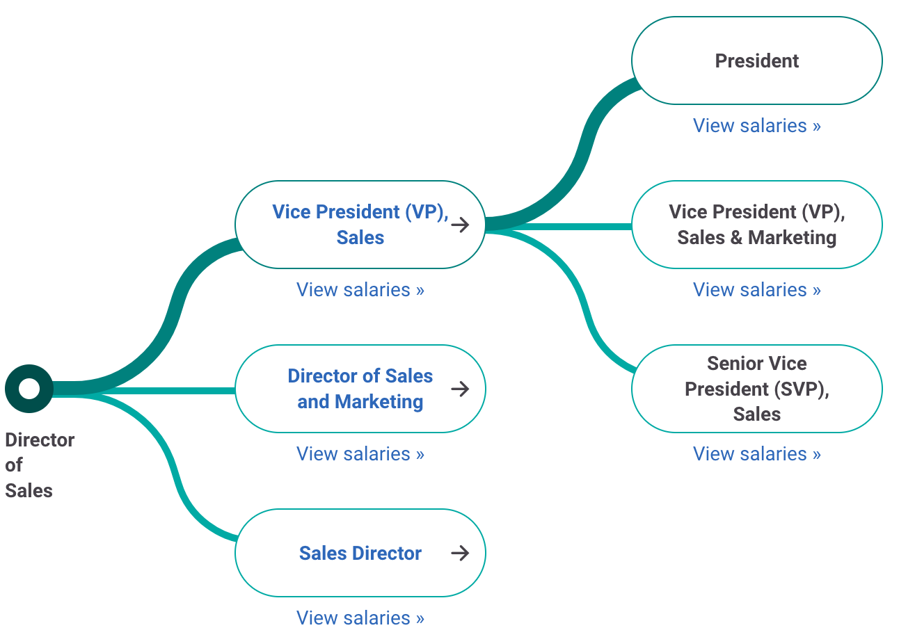 Director of Sales Career Path