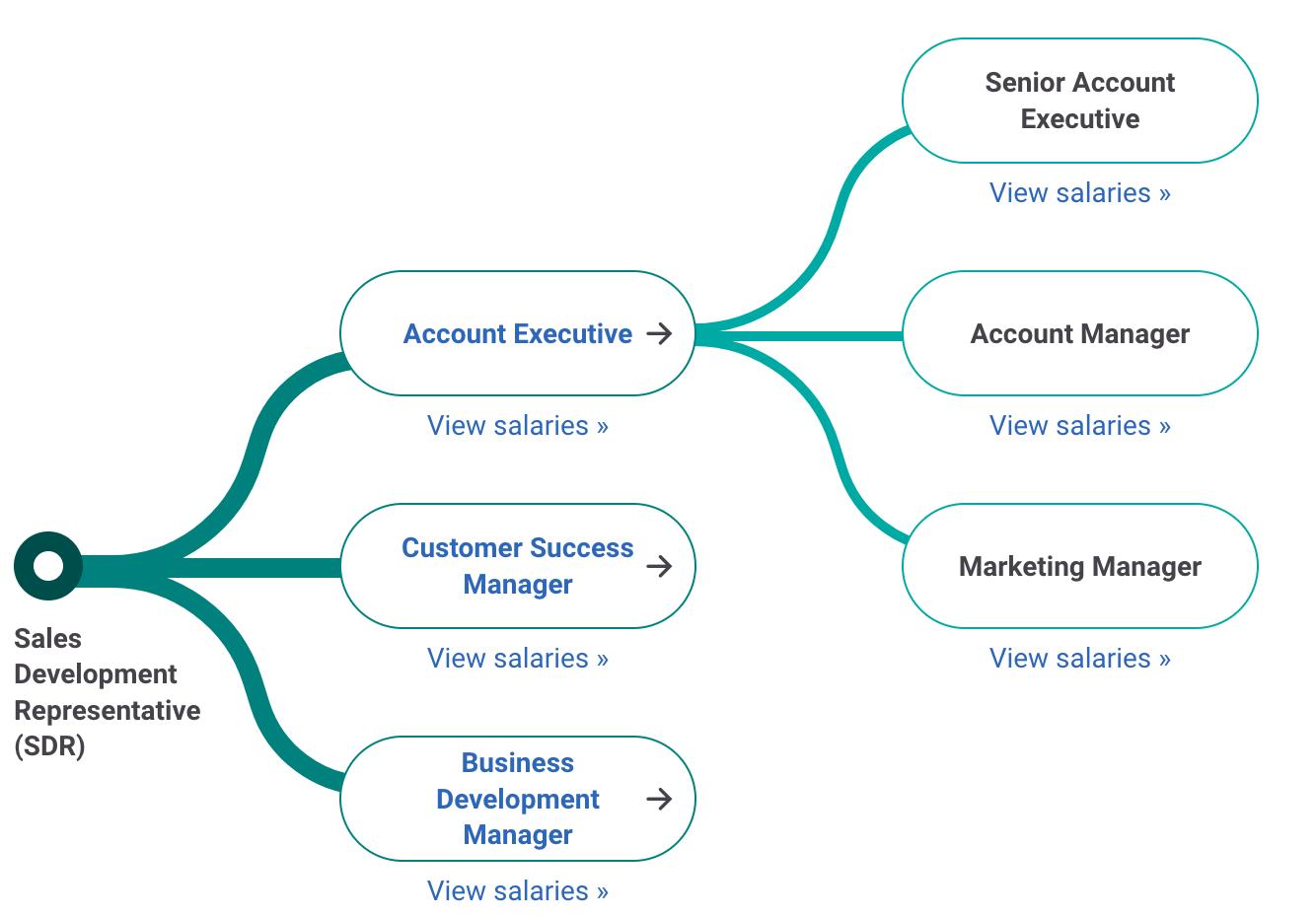 Sales Development Rep Career Path
