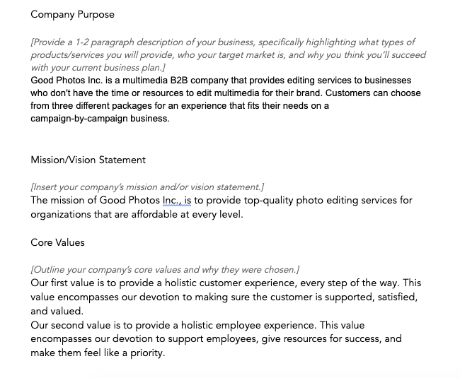 Company description example