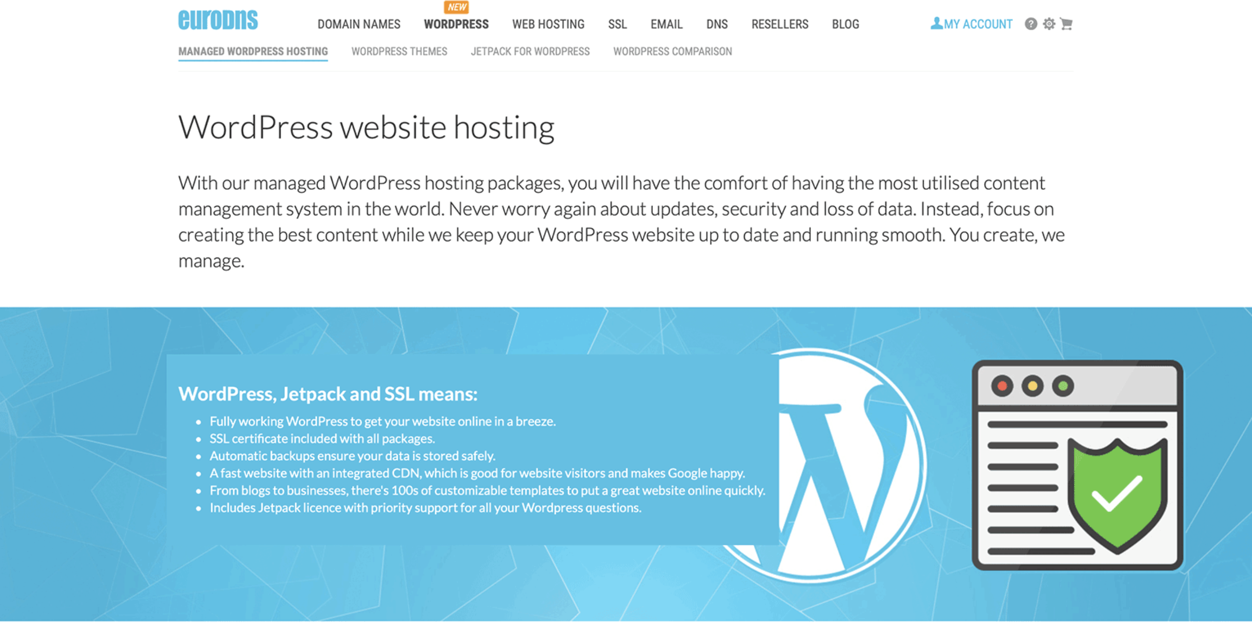 "eurodns homepage that reads ""wordpress website hosting"""