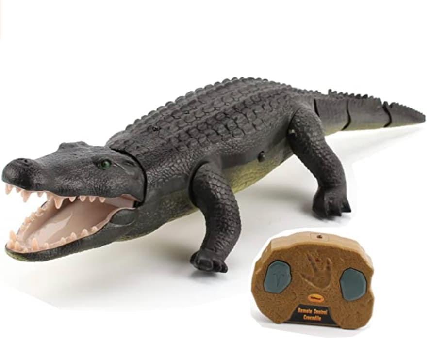 Customer service qualities crocodile