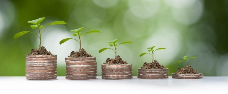 The Executive's Guide to Effective Lead Nurturing Programs