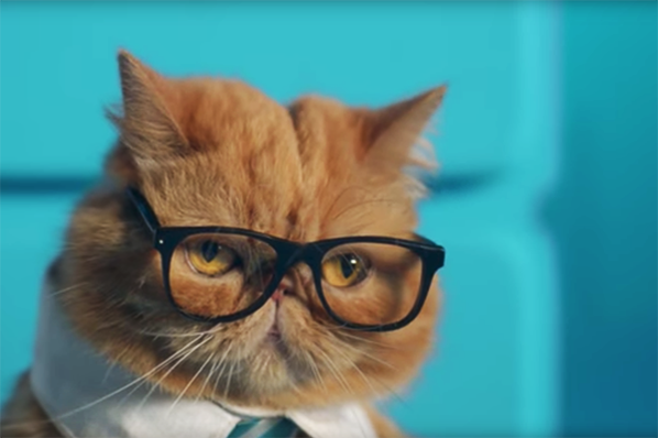 10 of the Best Ads from November: Elves, Llamas, and a Business Cat