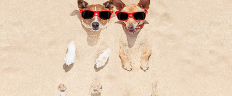 13 Tips to Crawl Out of a Summer Sales Slump