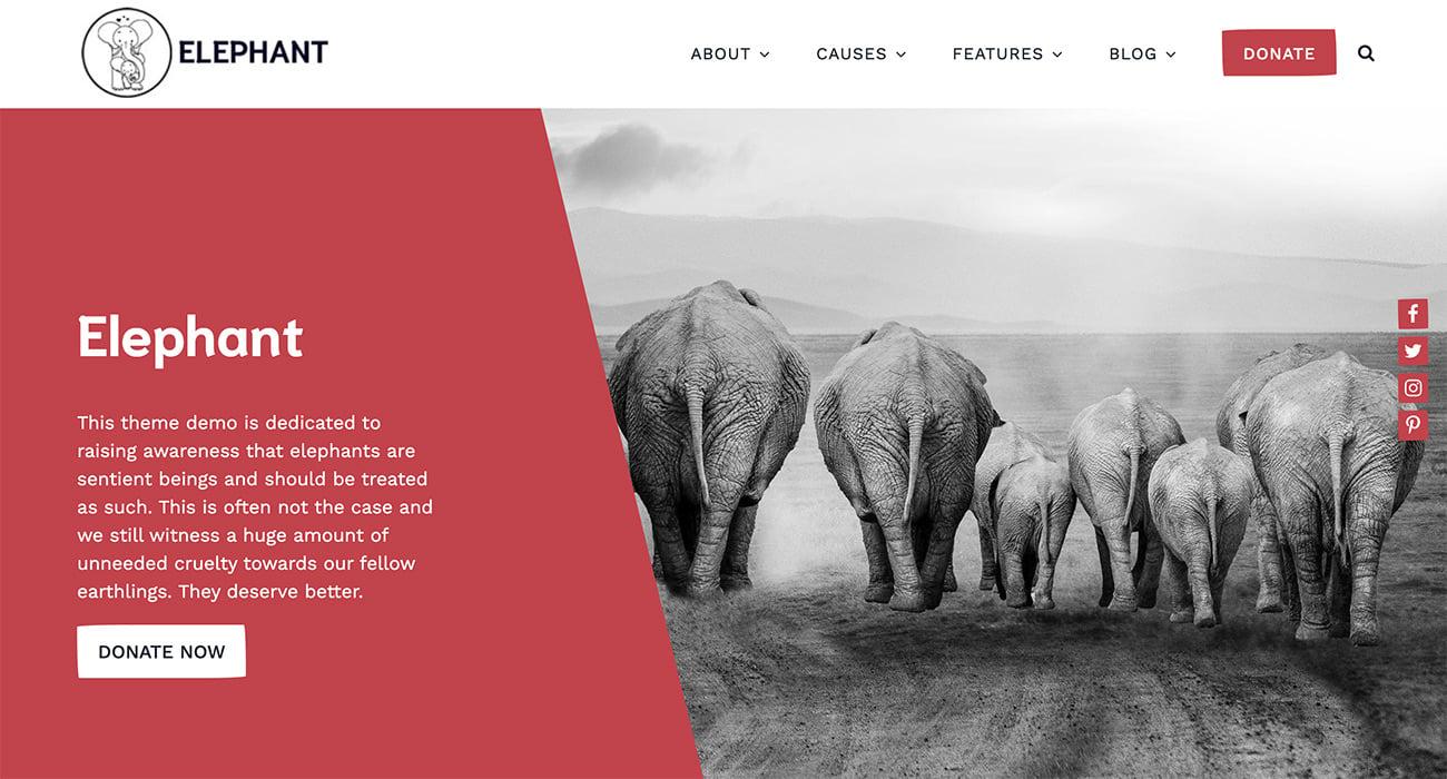 Elephant WordPress theme for nonprofit organizations