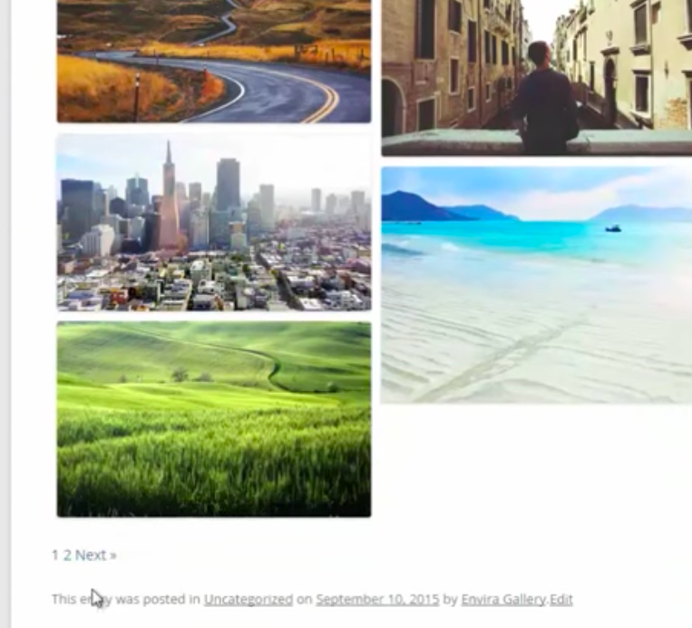 Envira Gallery Wordpress Pagination Plugin