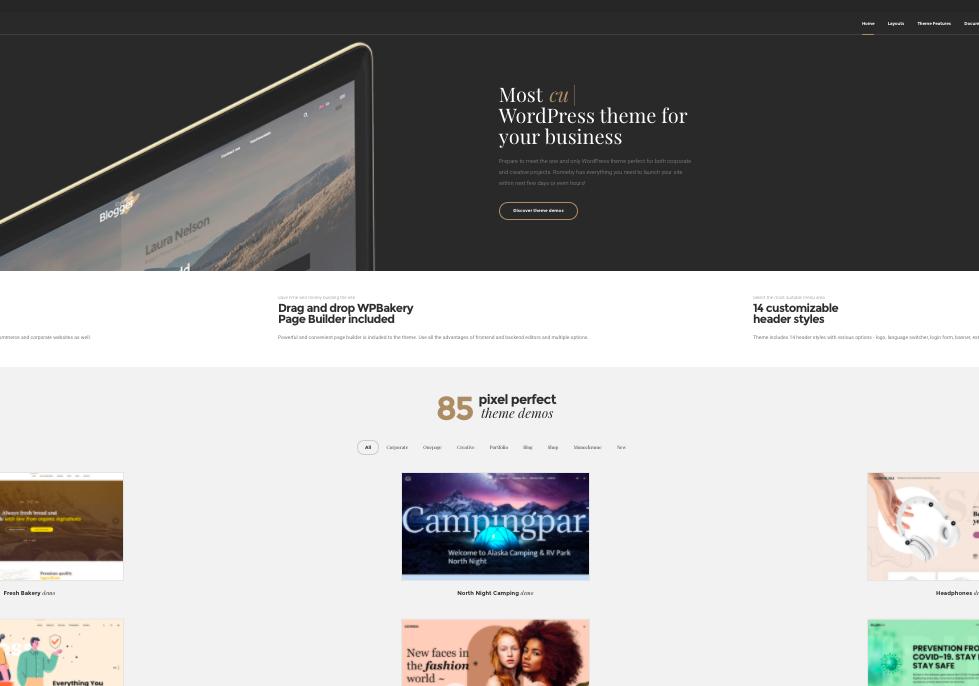 Ronneby-wordpress-theme-full-screen