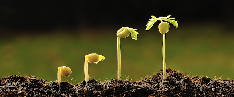 Why Your Company Needs a CRM System In Order to Grow