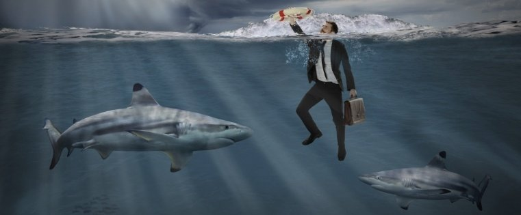 8 of the Weirdest Shark Tank Products That Got Investments