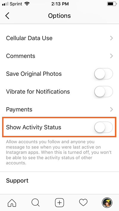 "How to Turn Off Instagram's New ""Last Online"" Feature show activity status"