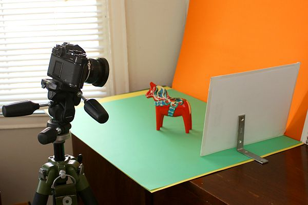 Standalone bounce card set up behind a miniature horse for shooting product photography under soft light